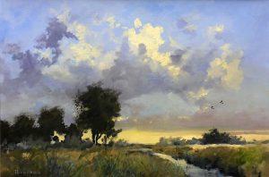 Tjeerd Landman - Kievitten