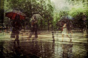 Thomas Vanoost - Rainy Day