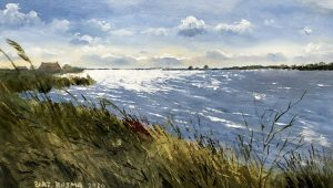 Bart Bosma - De Fiskersbuorren Gaastermeer