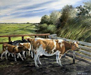 Bart Bosma - Koeien bij het Sneekermeer