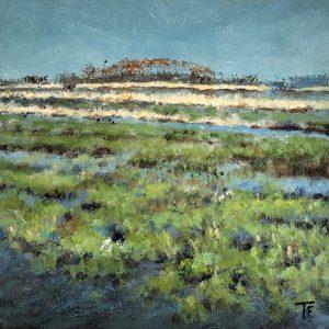 Tryntsje Snelter-Folmer - Wetlands bij de Leijen