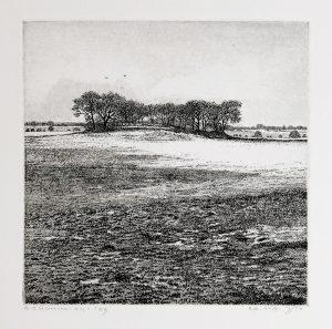 Reinder Homan - Hege Gerzen, Gaasterland
