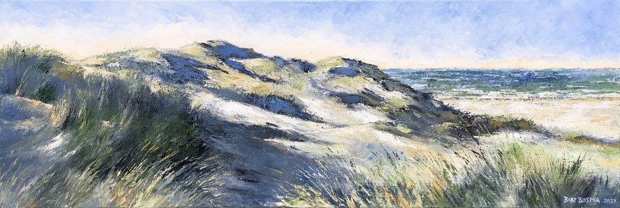 Bart Bosma - Avondstemming (Terschelling – duinen bij Formerum)